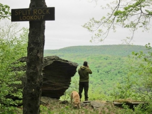 Split Rock view with mand and dog