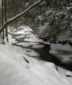 Parksville meandering stream