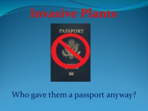 Invasive Plant Passport image